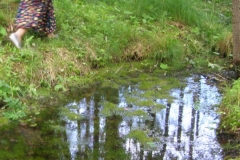 Pärandkultuuri õppereis Ambla kihelkonda 1. juulil 2011